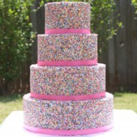 bellacakecreations  Cake Central Cake Decorator Profile