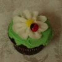 Rambo Cake Central Cake Decorator Profile