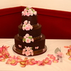 Viennamom Cake Central Cake Decorator Profile