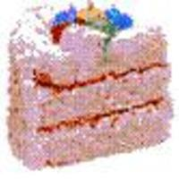 usdi_21 Cake Central Cake Decorator Profile