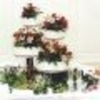 Wandootie  Cake Central Cake Decorator Profile
