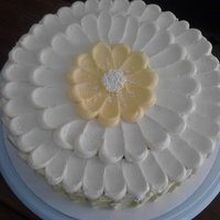 dgalla  Cake Central Cake Decorator Profile