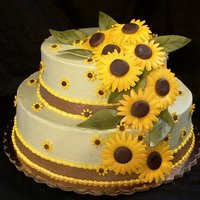 kuddlebugs  Cake Central Cake Decorator Profile