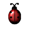 Ladybug21587  Cake Central Cake Decorator Profile