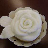 veracity  Cake Central Cake Decorator Profile