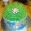 Smidge Cake Central Cake Decorator Profile