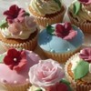senel Cake Central Cake Decorator Profile