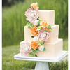 bakermamacakes Cake Central Cake Decorator Profile