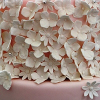 kjgm Cake Central Cake Decorator Profile