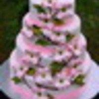 cakerygirl Cake Central Cake Decorator Profile