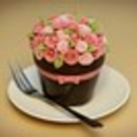 mrsmudrash Cake Central Cake Decorator Profile