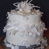 cakebloomers Cake Central Cake Decorator Profile