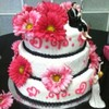 pandj04  Cake Central Cake Decorator Profile