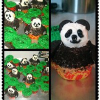 cgewargis Cake Central Cake Decorator Profile