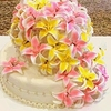 feelslikesilk Cake Central Cake Decorator Profile