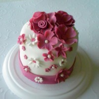 freakymama23 Cake Central Cake Decorator Profile