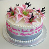 AnissaSC Cake Central Cake Decorator Profile