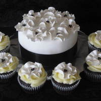 poochynooch  Cake Central Cake Decorator Profile