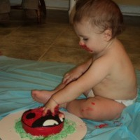Cake Decorator turtel