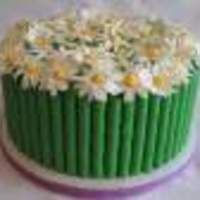 maimerbaker Cake Central Cake Decorator Profile
