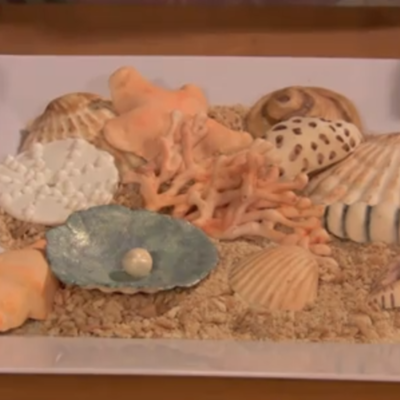 How to Make Coral, Seashells and Sea Urchins Tutorial on Cake Central