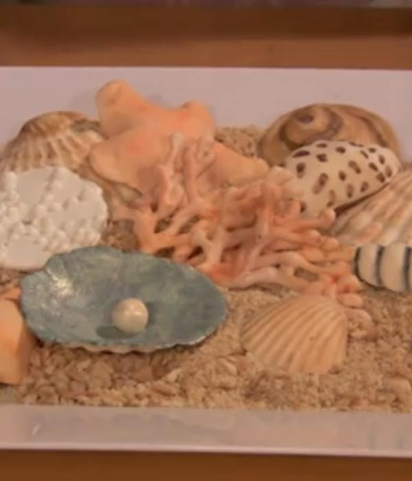 How to Make Coral, Seashells and Sea Urchins Tutorial