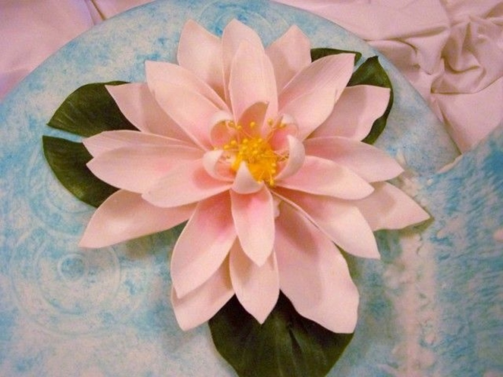 Top water lily cakes cakecentral izmirmasajfo
