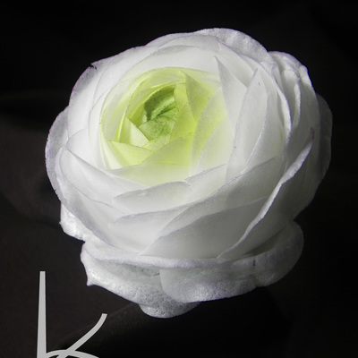 Wafer Paper Ranunculus Tutorial on Cake Central