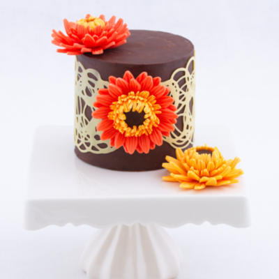 Modeling Chocolate Gerbera Daisy Tutorial on Cake Central