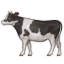 cow2.png