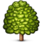 deciduous_tree.png