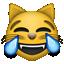 joy_cat.png
