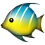 tropical_fish.png