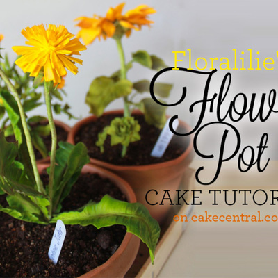 Flower Pot Cake Tutorial on Cake Central