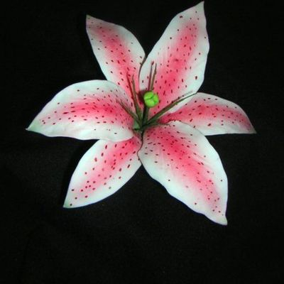 How To Make A Gumpaste Stargazer Lily (Asian Lily) on Cake Central