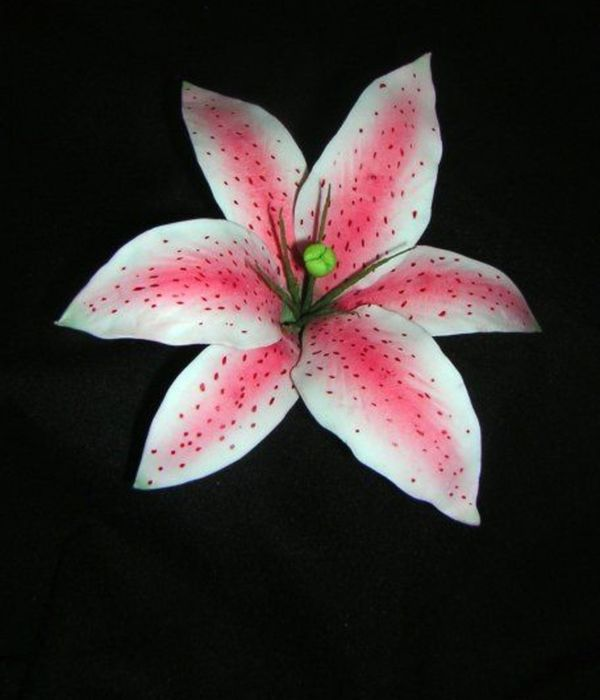 How To Make A Gumpaste Stargazer Lily (Asian Lily)