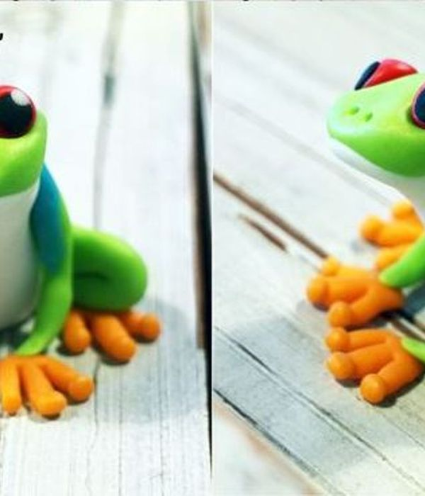 Tree Frog Cake Topper Pictorial