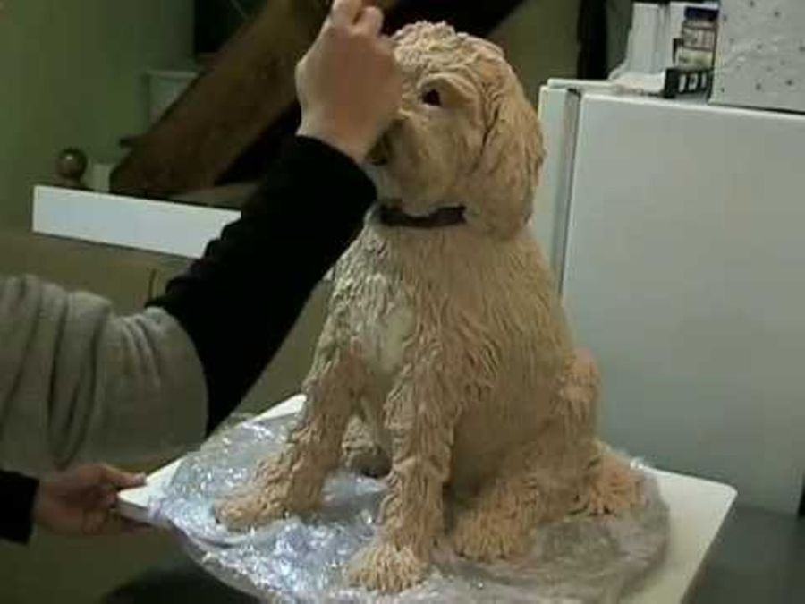 Time Lapse Of Elisa Strauss Sculpted Dog Cake