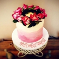 hippiecac Cake Central Cake Decorator Profile