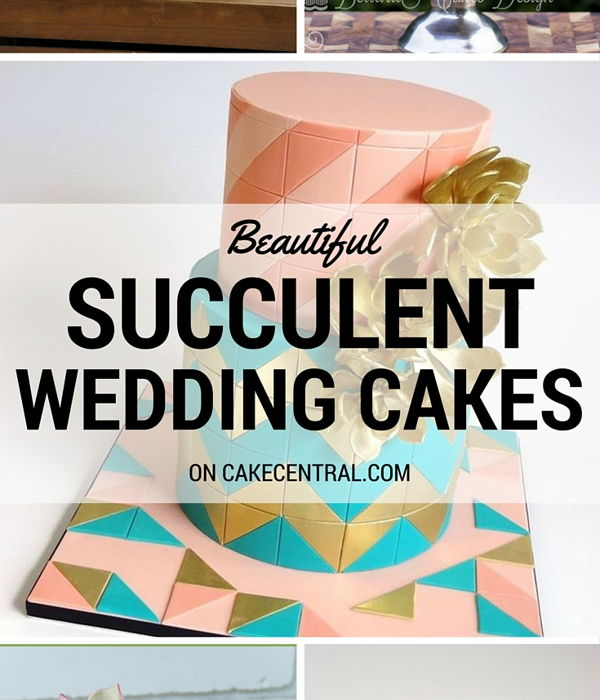 Top Succulent Wedding Cakes
