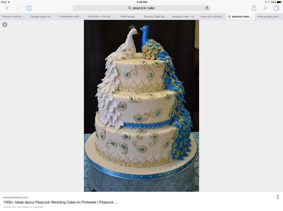 900_peacock-cake-help_985888576dabe1c22f6.png