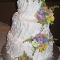 dawncr Cake Central Cake Decorator Profile
