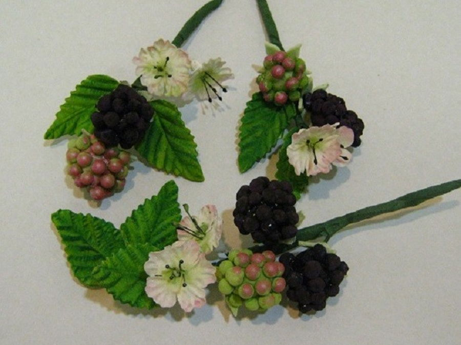 900_gumpaste-blackberries_547355782fd6e6ba22.jpg