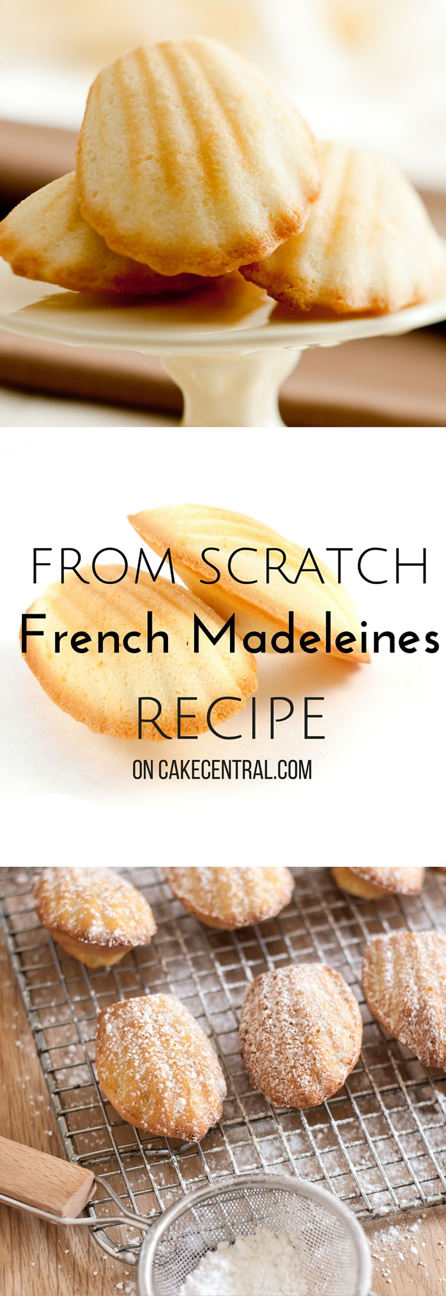 Pure Vanilla Extract >> Madeleines - CakeCentral.com