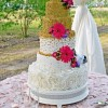 SugarArtbyAngela Cake Central Cake Decorator Profile