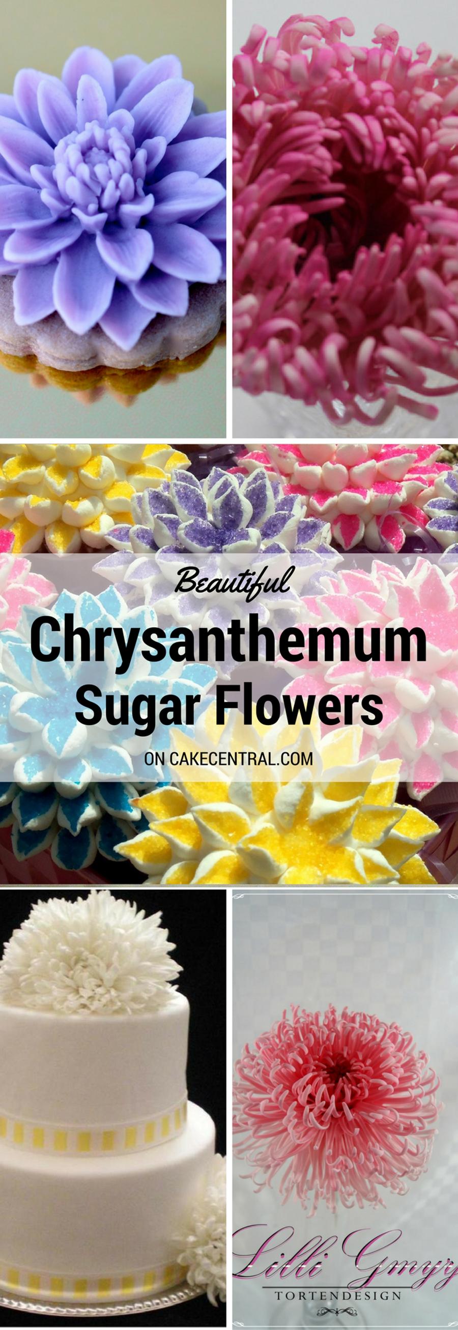 Beautiful Chrysanthemum Cakes Cakecentral Com