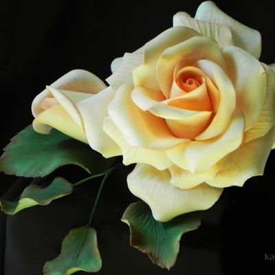 Kara Andretta's Gumpaste Rose Tutorial on Cake Central