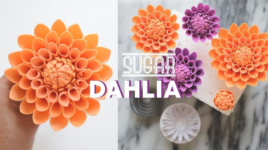 How To Make Gumpaste Dahlia Cakecentral Com