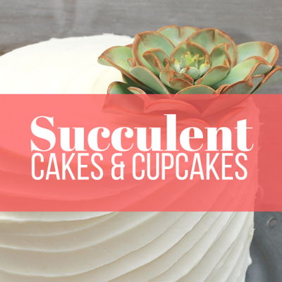Succulent Cakes Too Pretty To Eat on Cake Central