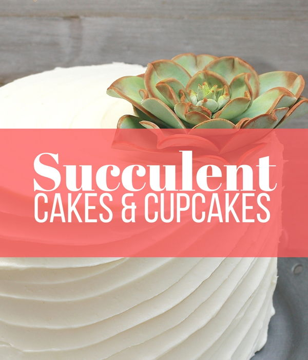 Succulent Cakes Too Pretty To Eat